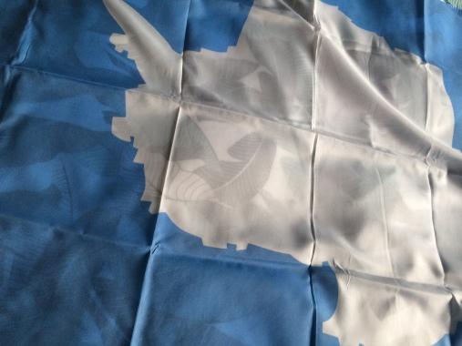 Antarctica Flag