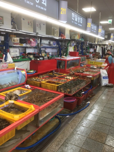 Jagalchi Fish Market, Busan. [Photo by Marc Lanteigne]