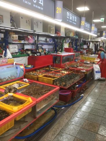 Jagalchi Fish Market, Busan. [Photo by Marc Lanteigne]